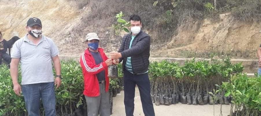 ENTREGA DE PLANTAS FRUTALES A LA COMUNIDAD DE LUGMAS.